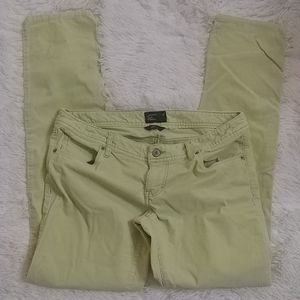 AMERICAN EAGLE Spring Green Pants 8